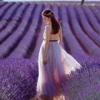 Лаванда, или Радость цвета мечты