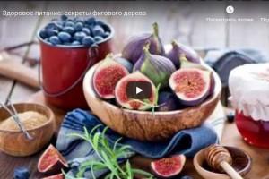 Здоровое питание: секреты фигового дерева (видео)