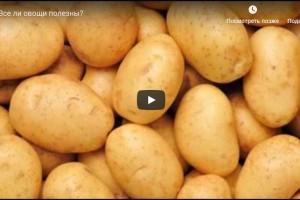 Все ли овощи полезны? (видео)